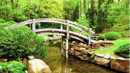 Harika Köprü Duvar Kağıdı