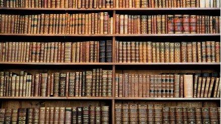 Kitaplık Temalı 3 Boyutlu Duvar Kağıdı
