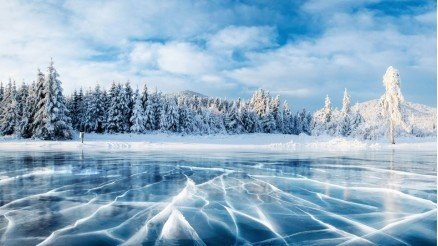 Buz Tutmuş Göl ve Çam Ağaçları