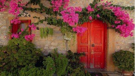 Çiçekli Kapı Duvar Kağıdı