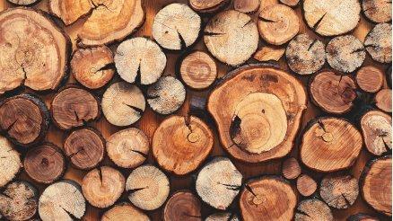 Dizilmiş Odunlar Duvar Kağıdı