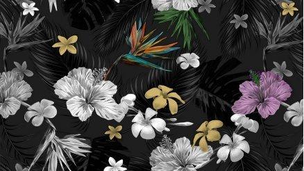 Siyah Zemindeki Çiçekler Duvar Kağıdı