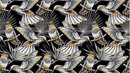 Hummingbird Duvar Kağıdı