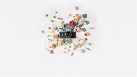 Çiçek ve Fotoğraf Makinesi Duvar Kağıdı