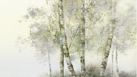 SNT-160017056 - Sanatsal Duvar Kağıdı