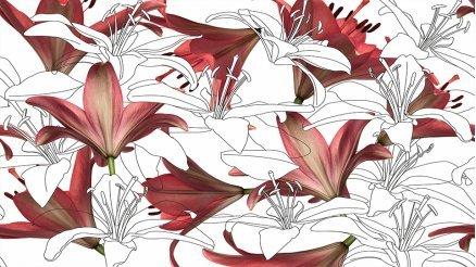 Büyük Çiçekler Duvar Kağıdı
