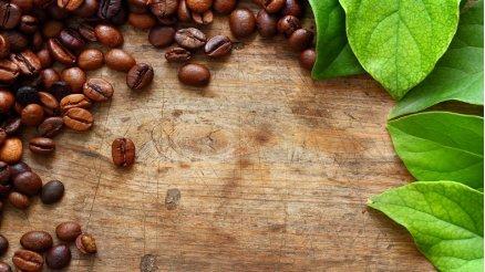 YD-190002 - Kahve Taneleri Duvar Kağıdı