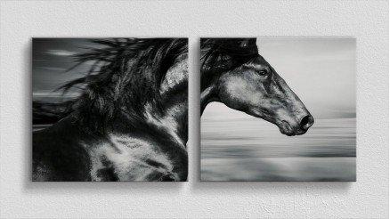 HYV-110017001 - Hayvanlar Alemi Kanvas Tablo
