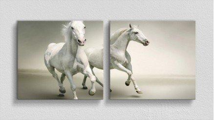 HYV-110017002 - Hayvanlar Alemi Kanvas Tablo
