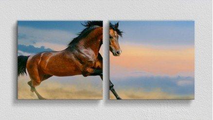 HYV-110017003 - Hayvanlar Alemi Kanvas Tablo