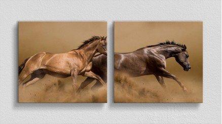 HYV-110017009 - Hayvanlar Alemi Kanvas Tablo