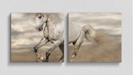 HYV-110017012 - Hayvanlar Alemi Kanvas Tablo