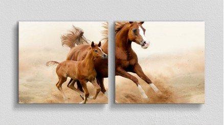 HYV-110017013 - Hayvanlar Alemi Kanvas Tablo