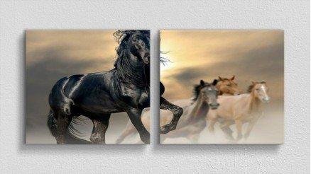 HYV-110017015 - Hayvanlar Alemi Kanvas Tablo