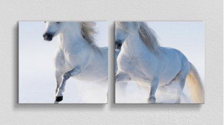 HYV-110017017 - Hayvanlar Alemi Kanvas Tablo