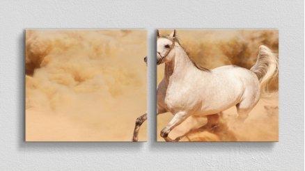 HYV-110017018 - Hayvanlar Alemi Kanvas Tablo