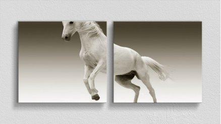 HYV-110017019 - Hayvanlar Alemi Kanvas Tablo