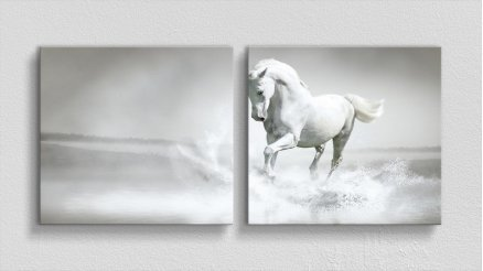HYV-110017023 - Hayvanlar Alemi Kanvas Tablo