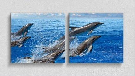 HYV-110017032 - Hayvanlar Alemi Kanvas Tablo