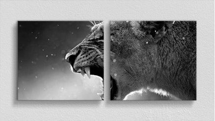 HYV-110017129 - Hayvanlar Alemi Kanvas Tablo