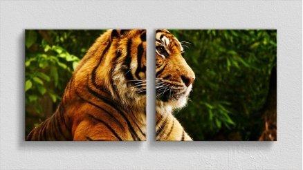 HYV-110017130 - Hayvanlar Alemi Kanvas Tablo