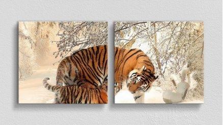 HYV-110017135 - Hayvanlar Alemi Kanvas Tablo