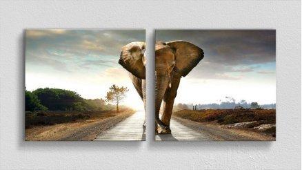 HYV-110017142 - Hayvanlar Alemi Kanvas Tablo